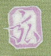 IMGP8228-1